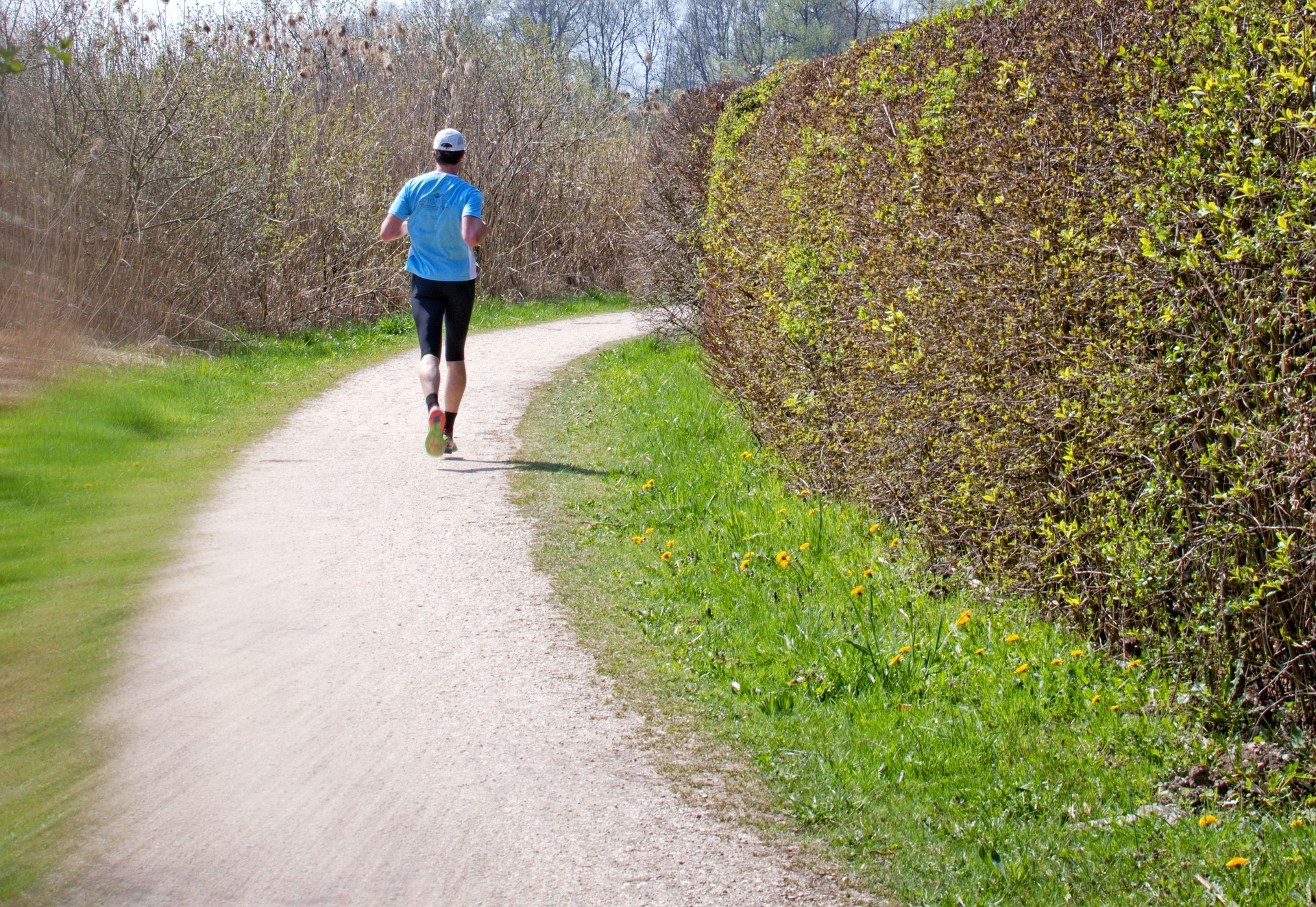7 Running Surfaces And How They Affect The Body Long Run